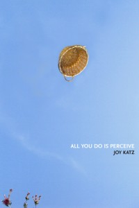 ALL YOU DO IS PERCEIVE, Joy Katz