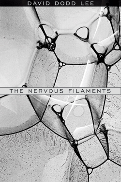 The Nervous Filaments Cover
