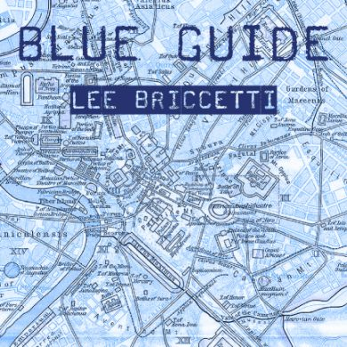 Front Cover of Lee Briccetti's Blue Guide